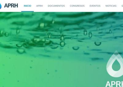 Sitio Web Asociación Paraguaya de Recursos Hídricos