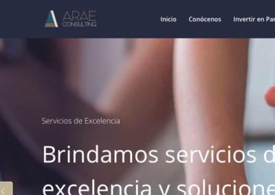 Sitio Web ARAE Consulting