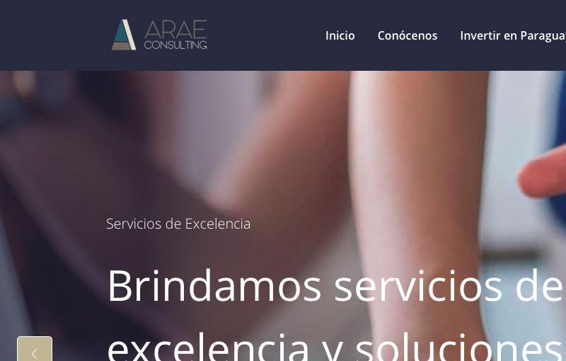 ARAE Consulting